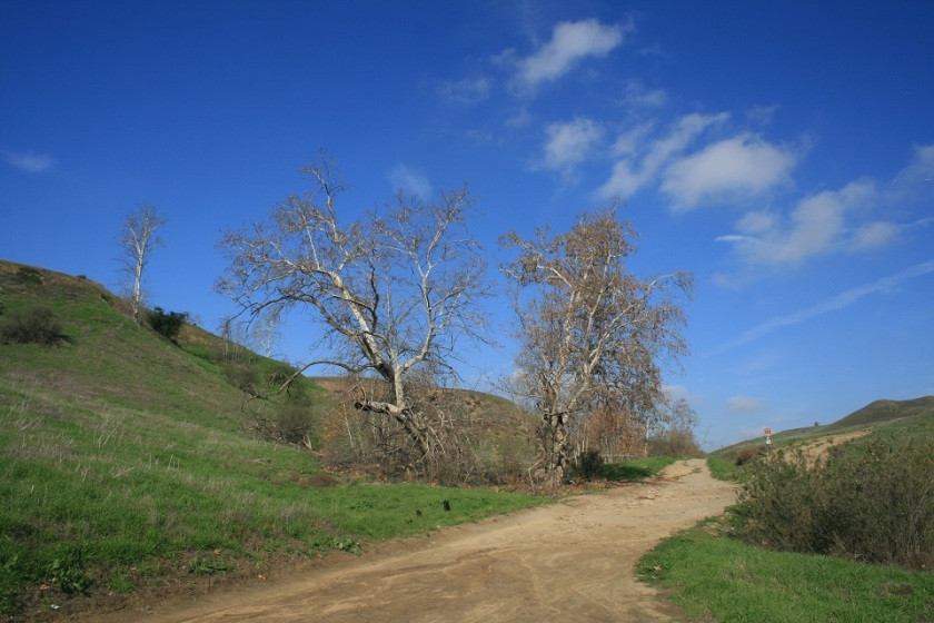 Bane Canyon, Chino Hills State Park, CA