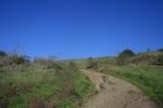 Cerro Rebal Trail, San Juan Capistrano, CA