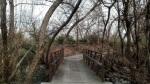 Footbridge in Chino Creek Wetlands, Chino, CA