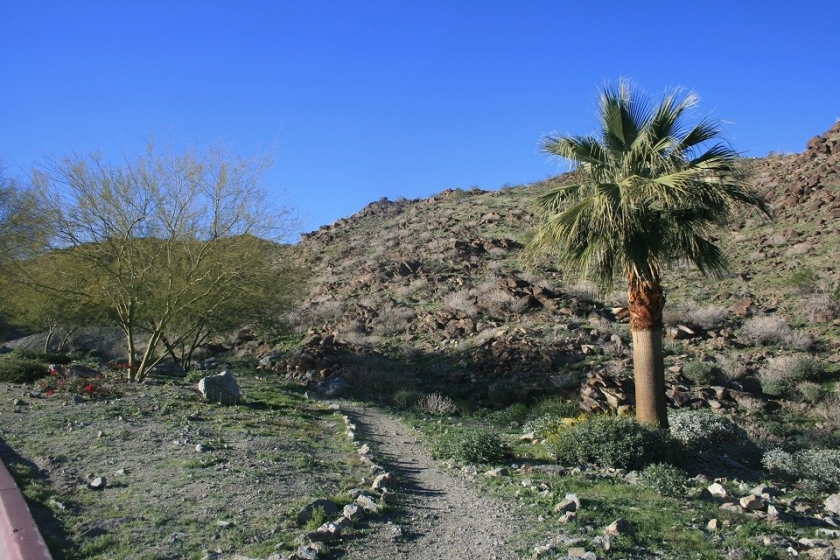 Roadrunner Trail, Rancho Mirage, CA