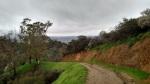 Toyon Trail, Griffith Park, CA