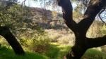 Cold Creek High Trail, Calabasas, CA