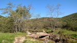 Oak Canyon, Mission Trails Regional Park, San Diego