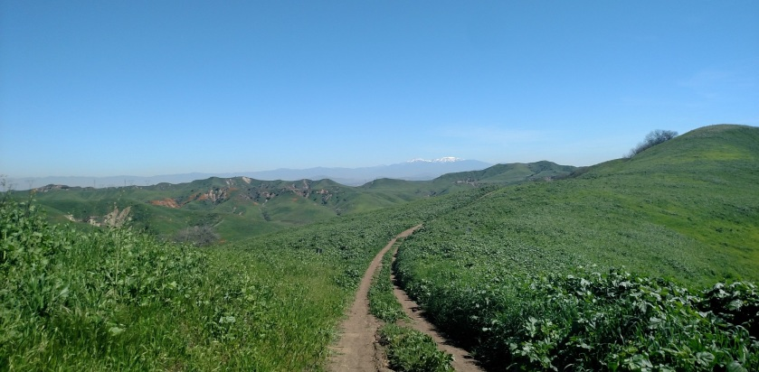 San Gorgonio Mountain from San Juan Hill