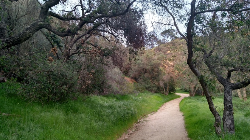 Nature Loop, Western Canyon, Griffith Park, CA