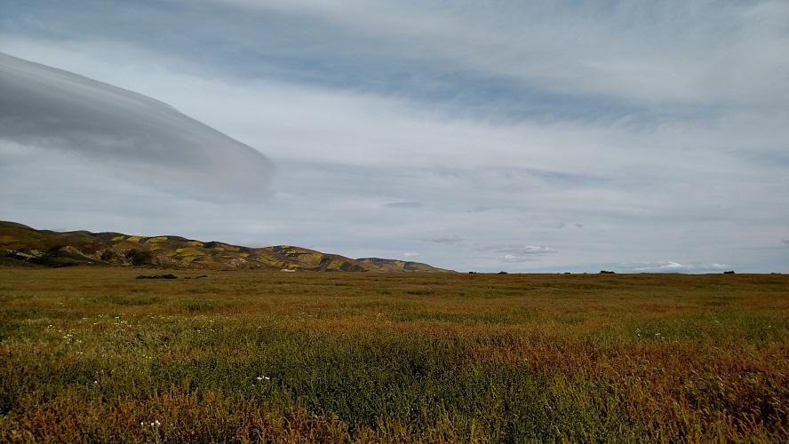 Carrizo Plain National Monument, San Luis Obispo County, CA