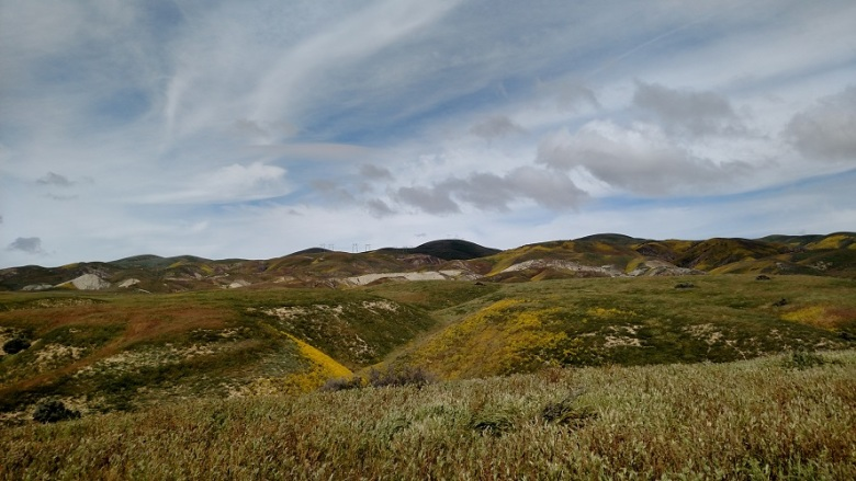 Wallace Creek, Carrizo Plain National Monument, CA