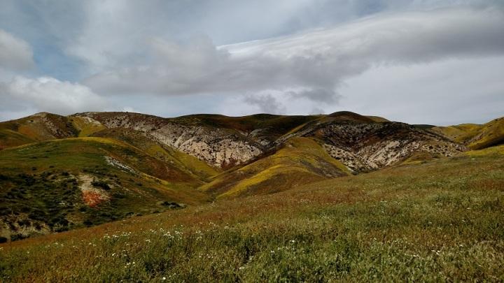 Temblor Mountains, San Luis Obispo County, CA