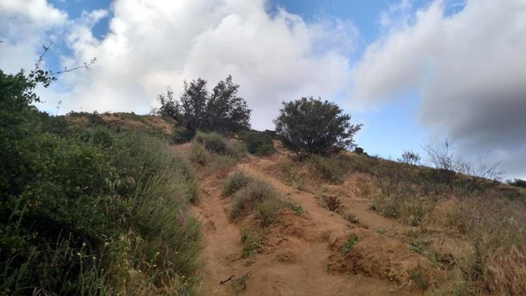 Poopout Trail, Glendora, CA