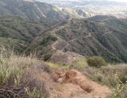 Punk Out Trail, Glendora, CA