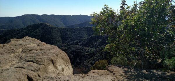 Farmer Ridge Fire Road, Santa Monica Mountains, CA