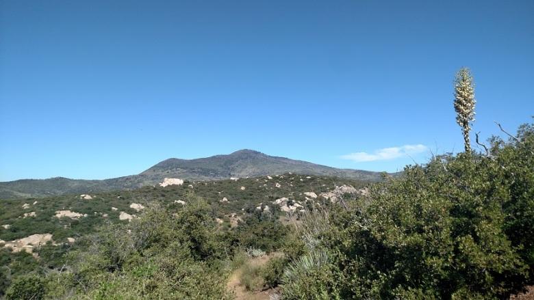 Dyar Spring Trail, Cuyamaca Rancho State Park, CA
