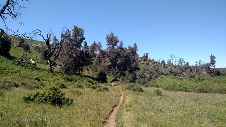 East Side Trail, Cuyamaca Rancho State Park, CA