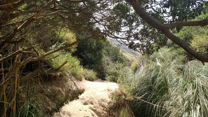 Ho Chi Minh Trail, La Jolla, CA