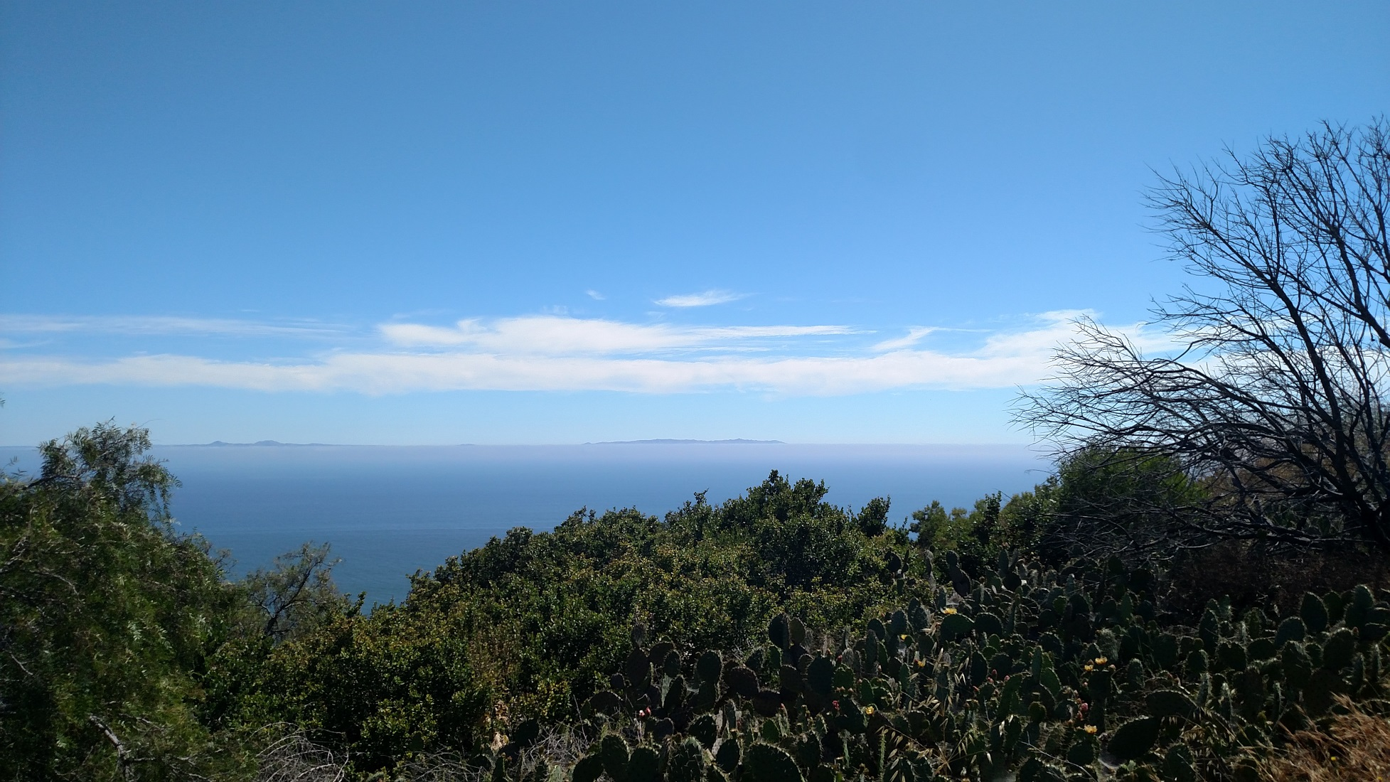 Upper Filiorum Reserve, Palos Verdes, CA