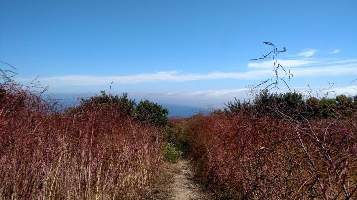 Ford Trail, Upper Filiorum Reserve, Palos Verdes, CA