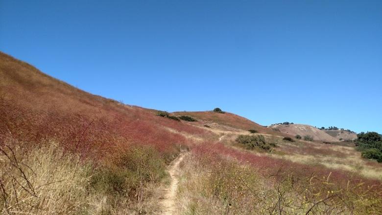 Jack's Hat Trail, Palos Verdes Peninsula, CA