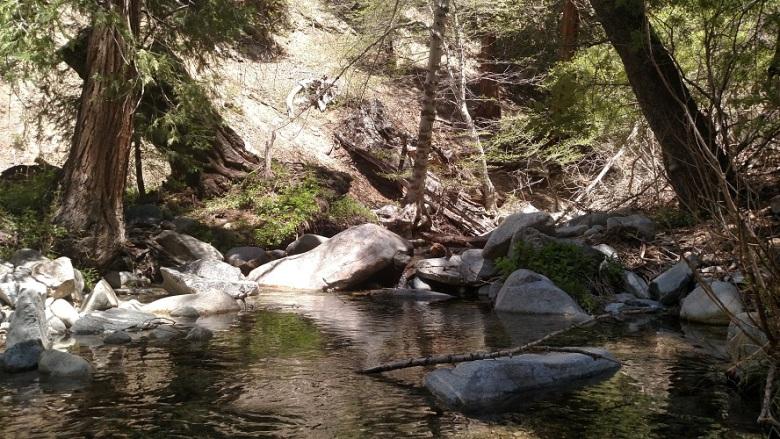 Buckhorn Creek, Angeles National Forest, CA