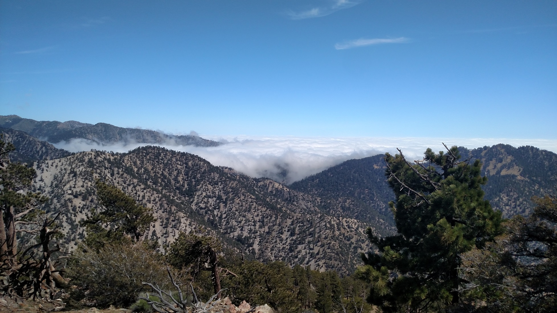 Will Thrall Peak, Angeles National Forest, CA