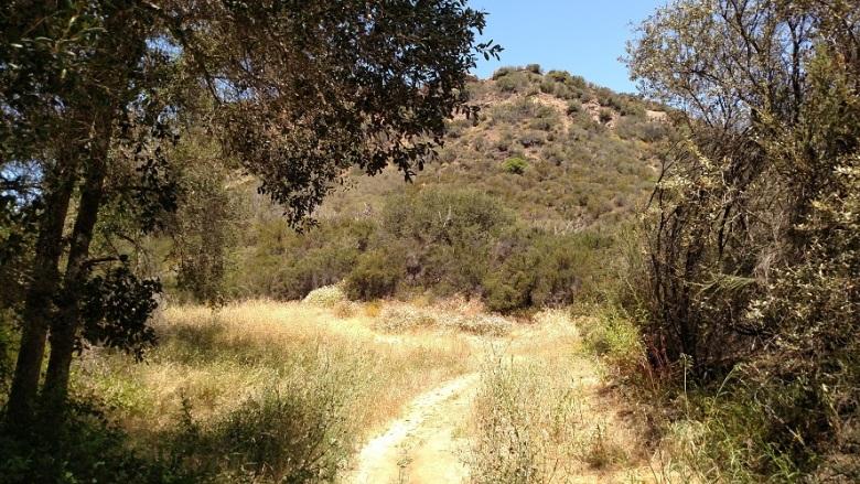 Tapia Spur Trail, Malibu Creek State Park