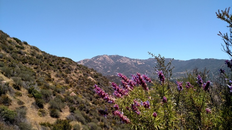 Tapia Spur Trail, Malibu, CA