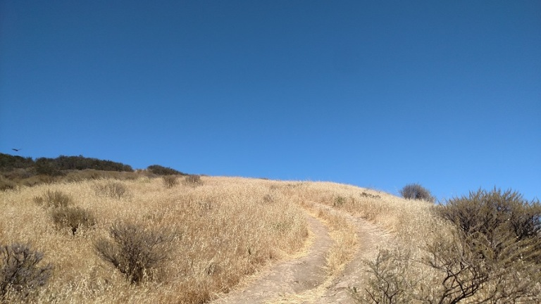 Trespass Trail, Gaviota State Park, CA