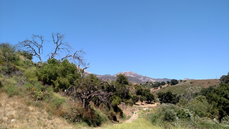 Stevens Park, Santa Barbara, CA