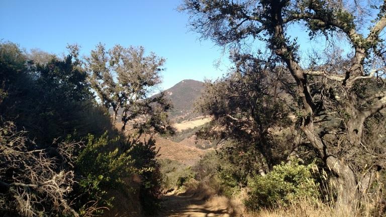 Las Cruces Trail, Gaviota State Park