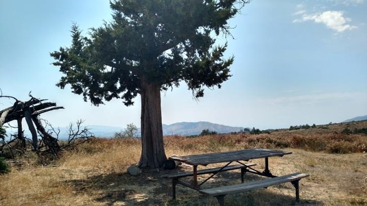 El Dorado Ranch Park, Yucaipa, CA