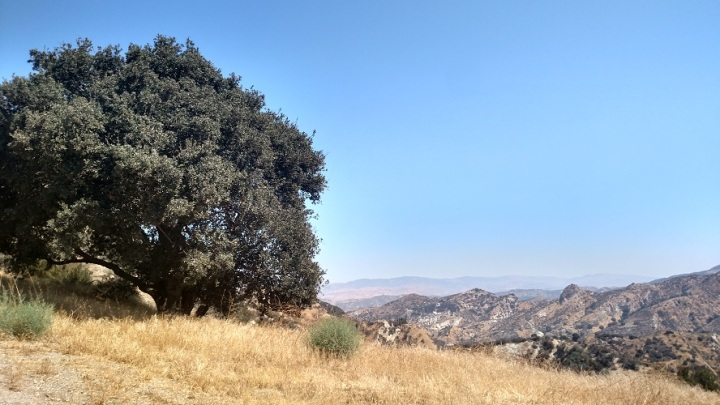 Newhall Pass Open Space, Santa Clarita, CA