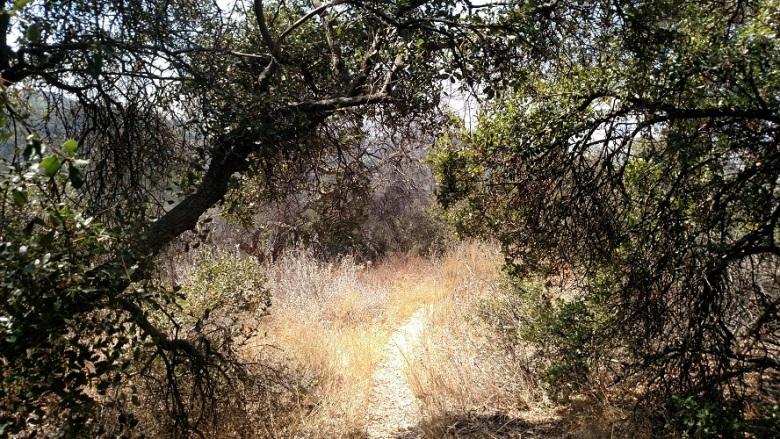 West Mulholland Trails, Santa Monica Mountains, CA