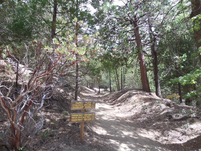 Stone Creek Trail, idyllwild, CA