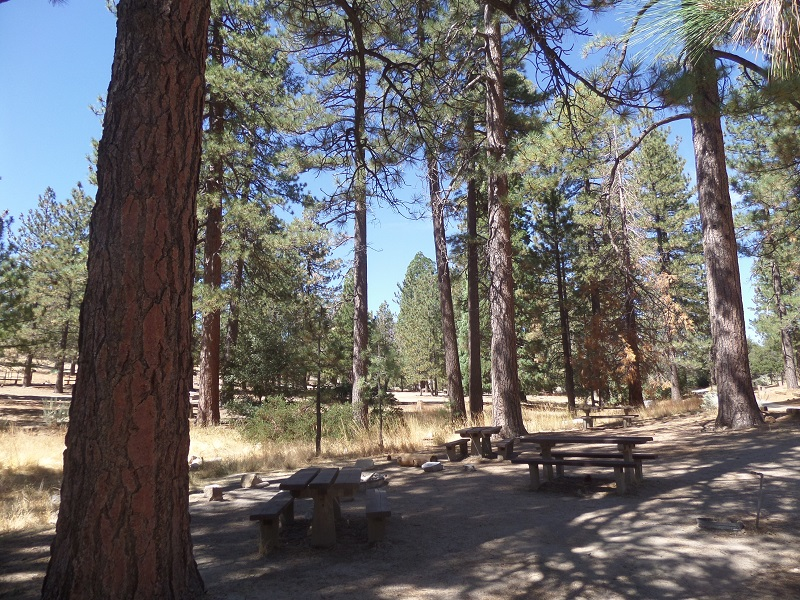 Bandido Campground, Angeles National Forest, CA