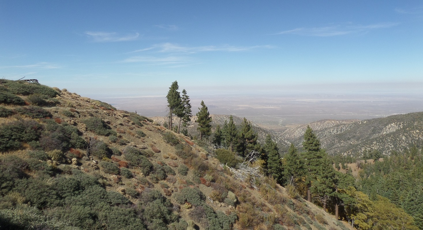 High desert, Angeles National Forest, CA