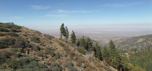High desert, Angeles National Forest, CA