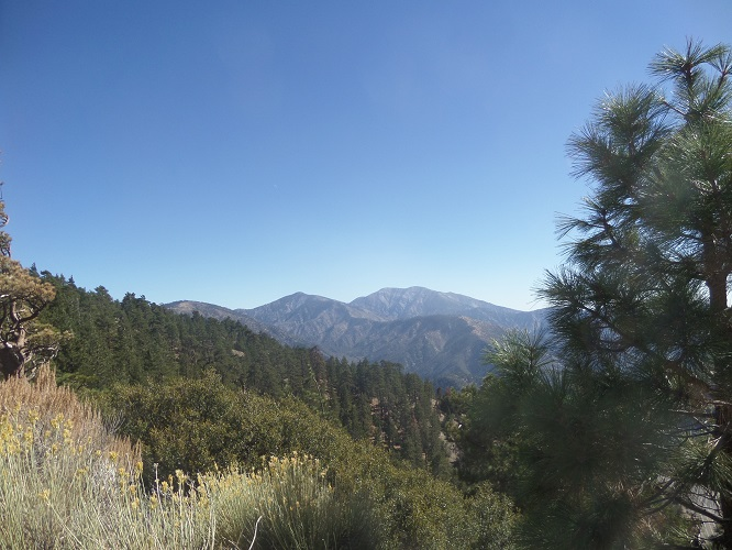 Mt. Baldy as seen from the Jackson Lake Trail, Angeles National Forest, CA