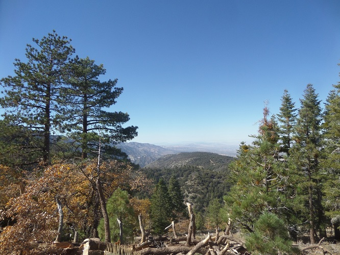 Jackson Lake Trail, Angeles National Forest, CA