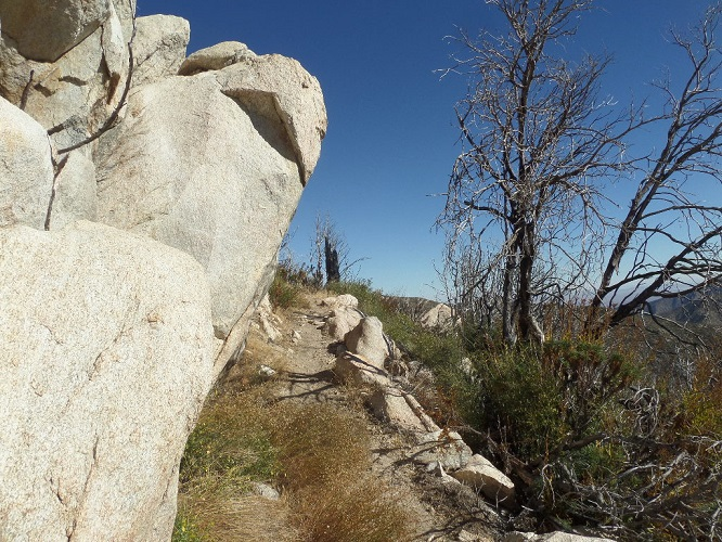 Pacific Crest Trail, Angeles National Forest