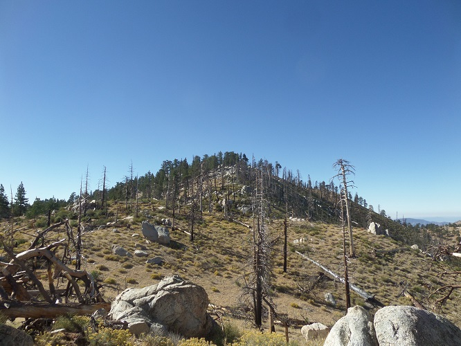 Pacifico Mountain, Angeles National Forest, CA