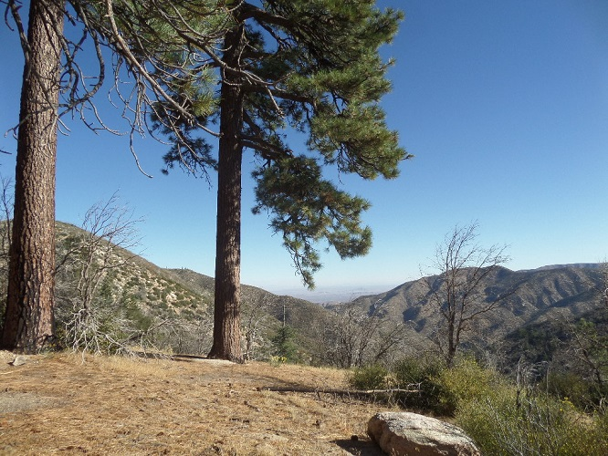 Pacifico Mountain, Angeles National Forest
