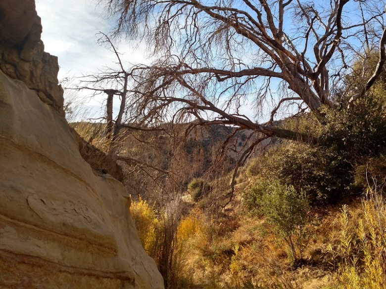 Deal Trail, Los Padres National Forest, CA