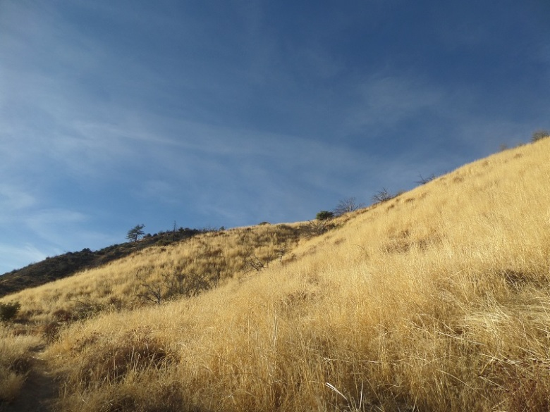 Deal Canyon, Los Padres National Forest