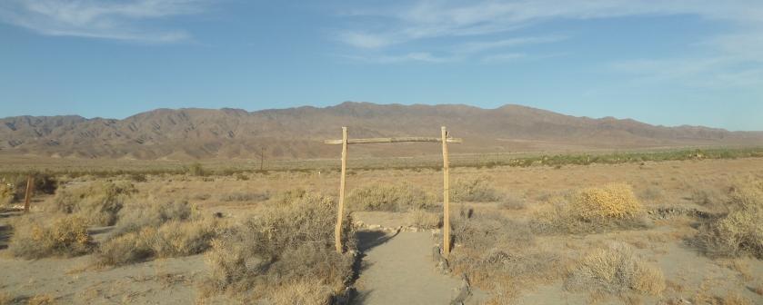 Dos Palmas Preserve, Coachella Valley, CA