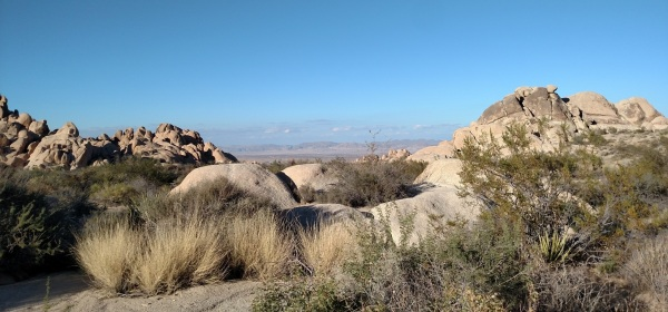 Indian Cove, Joshua Tree, CA