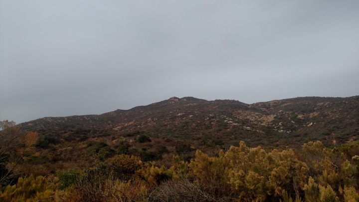 Cowles Peak, Mission Trails Regional Park, San Diego