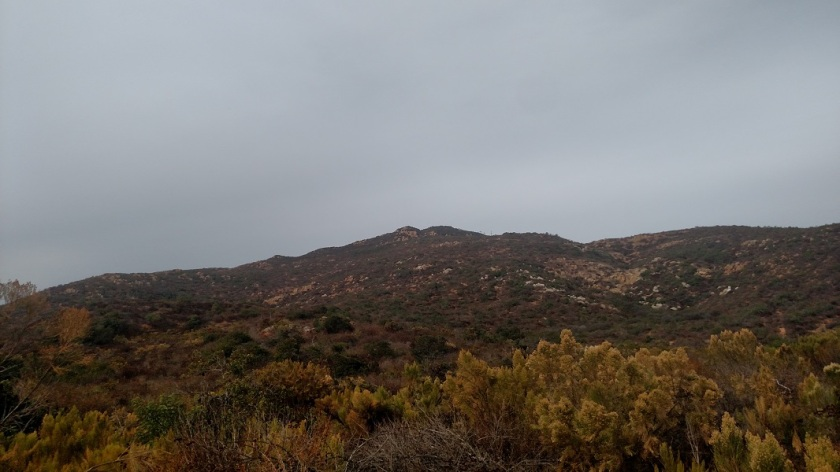 Cowles Peak, Mission Trails Regional Park, San Diego