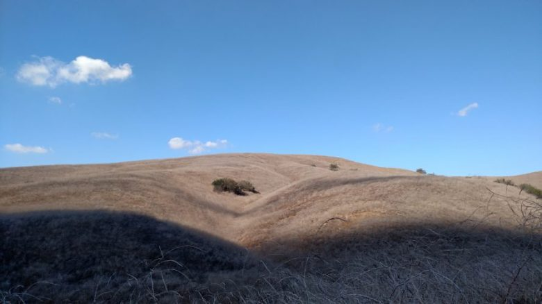 Raptor Ridge Trail, Chino Hills State Park