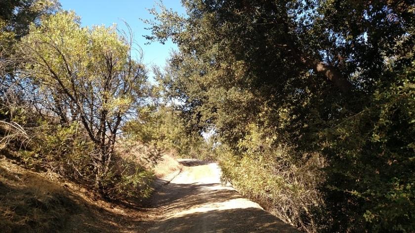Telegraph Canyon, Chino Hills State Park, CA