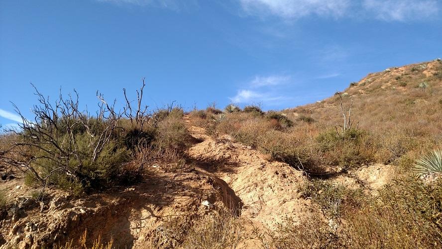 Rattlesnake Peak hike, Angeles National Forest, CA