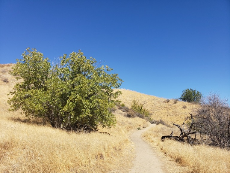 Elder Loop Trail, Rivendale Open Space, Santa Clarita, CA